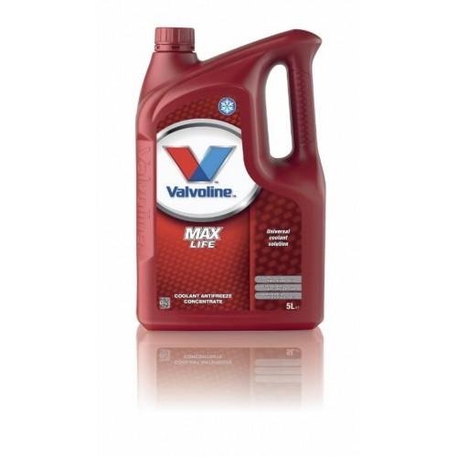 Valvoline Maxlife Antifreeze 5L (kontsentraat)